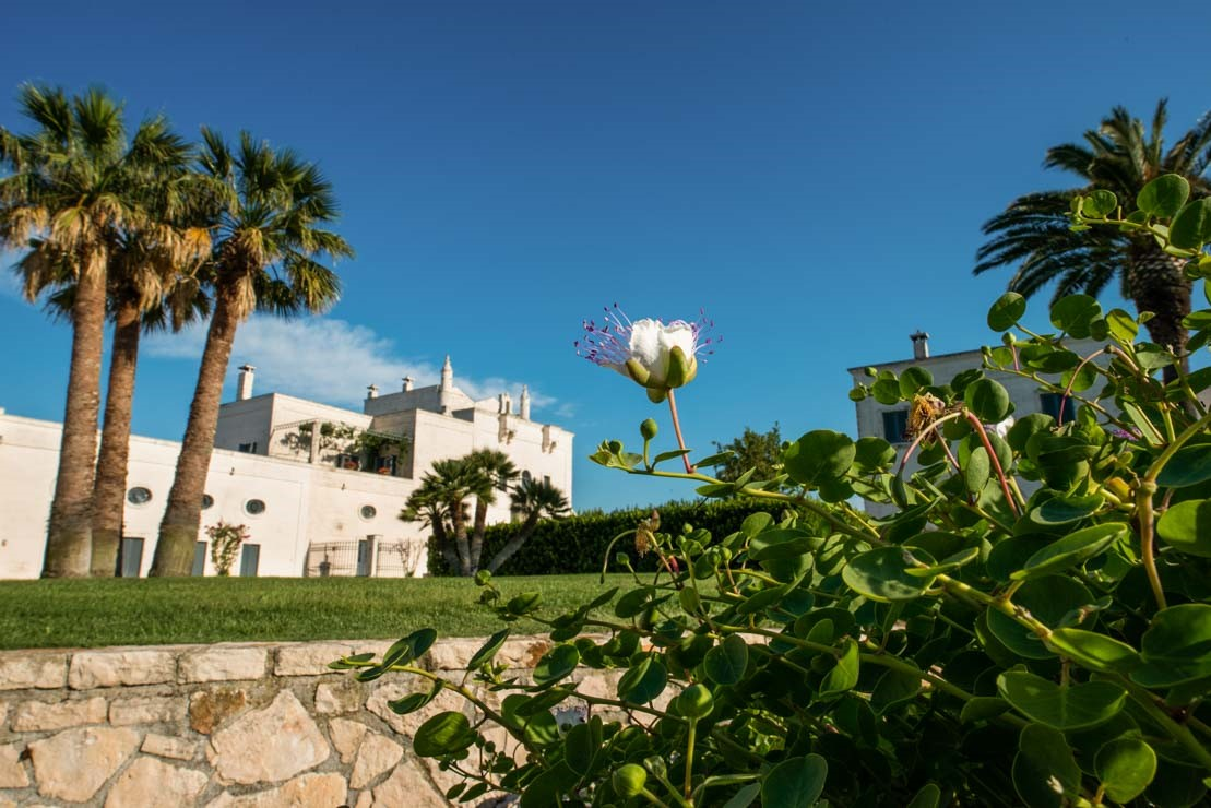 masseria garden italy relax